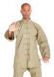 Meester van tai-chi Stock Foto's