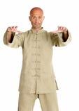 Meester van tai-chi Royalty-vrije Stock Afbeelding