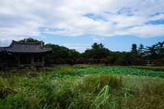 south korea gyeongju pond Scenic Area stock photos