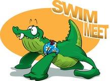 meet swim Стоковое Фото