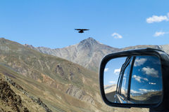 Meeting with eagle on the mountain pass in the car with rear vie Royalty Free Stock Photo