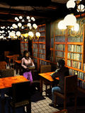 Meeting in the library. Young couple meeting for the first time into an old great library enlightened by big ceiling lamps Stock Photos