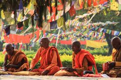 A meeting of monks at the holy tree in Lumbini - the birthplace of Lord Buddha stock photography