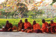 A meeting of monks at the holy tree in Lumbini - the birthplace of Lord Buddha stock photo