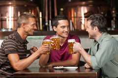 Meeting at the pub. Three happy friends drinking beer at the pub Royalty Free Stock Photos