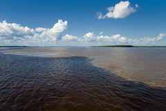 Meeting of Waters in the Amazon in Brazil. Meeting of Waters with Rio Negro and Amazon River, in the Amazon in Brazil Stock Photos