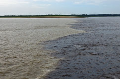 The Meeting of Waters, Amazon River Stock Images