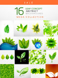 Mega collection of leaf abstract backgrounds Stock Photo