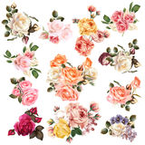 Mega Collection Of High Detailed Vector Flowers For Design Stock Photo