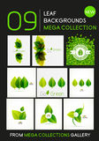 Mega collection of vector green leaf compositions Stock Photography