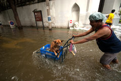 Mega floods at Bangkok in Thailand. Royalty Free Stock Image
