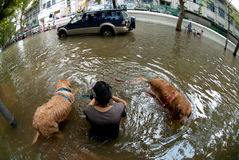 Mega floods at Bangkok in Thailand. Royalty Free Stock Photo