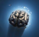 Mega hjärna Fotografering för Bildbyråer