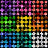 Mega pack of 144 in 1 natural and surreal blue, yellow, red, green, orange, turquoise, violet and pink flowers isolated Royalty Free Stock Photo