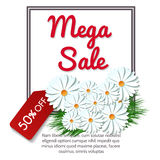 Mega sale banner with chamomile flowers Stock Photo