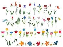 Mega samling av enkla blommor Arkivbilder