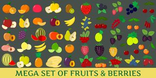Mega set of fresh fruits and berries illustrations on a dark background. Mega set fruits and berries . Organic vegetarian healthy food isolated on a dark Stock Images