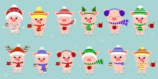 Mega set of twelve pigs in different hats and a scarf with cups of different hot drinks on the background of snowflakes. Happy New stock illustration