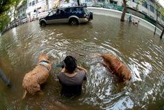 Mega vloed in Bangkok in Thailand. Royalty-vrije Stock Foto