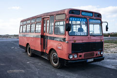 megabus foto de archivo