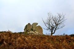 Megalithe Argimusco Lizenzfreie Stockfotografie