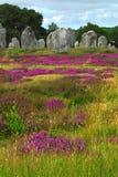 Megalithendenkmäler in Bretagne Stockfotografie