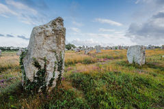 Megalithes in Carnac Stock Photography