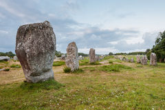 Megalithes in Carnac Royalty Free Stock Images