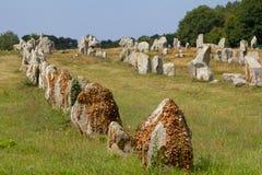Megalithic justeringar i Brittany Arkivfoto