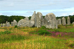 Free Megalithic Monuments In Brittany Royalty Free Stock Photo - 3822655