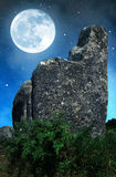 Megalithic monuments menhirs in Carnac Royalty Free Stock Photography