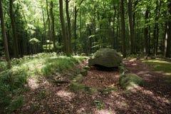 Megalithic Tomb Schmiedkow Stock Photography