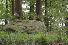 Megalithic Tomb Schmiedkow Stock Images