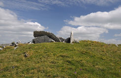 Megalithic Wedge Tomb. Small Megalithic Wedge Tomb with collapsed roof, Killinaboy Common, The Burren Stock Photo