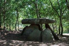 Megalitisch graf in een bos in Spanje stock afbeeldingen