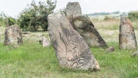 Megalityczni Tiya kamienia filary, UNESCO światowego dziedzictwa miejsce blisko, Etiopia Obraz Stock