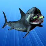 Megalodon Fotos de Stock Royalty Free