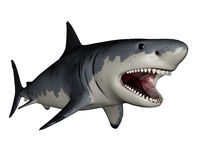Megalodon dinosaur - 3D render Royalty Free Stock Photography