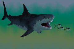 Megalodon rekinu atak fotografia stock