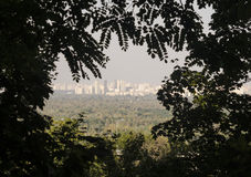 Megalopolis civilization vew in leaves. Megalopolis as it is seen from the wood. Meeting point of nature and human civilization stock images
