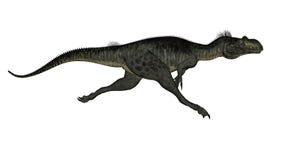 Megalosaurus dinosaur - 3D render Stock Photos