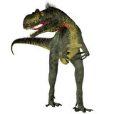 Megalosaurus on White Stock Images