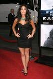 Megan Fox 免版税库存图片