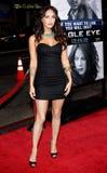 Megan Fox Image libre de droits