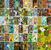 Megareeks verticale kaarten met bloemenontwerpelementen en leuke wilde vogels vector illustratie