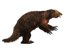 Megatherium Sloth Side Profile Stock Photo