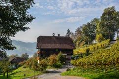 Meggenhorn Castle with vineyard stock images