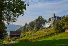 Meggenhorn slott med vingården arkivfoto