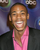 Mehcad Brooks Royalty Free Stock Photo