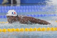 Mehdy metella Coupe Du Monde Pływanie àChartres Zdjęcia Stock